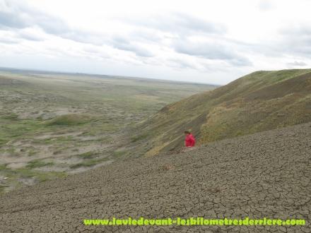 Grass land (15) (1280x960)