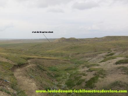 Grass land (5) (1280x960)