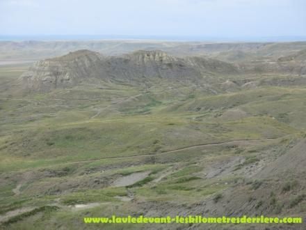 Grass land (8) (1280x960)