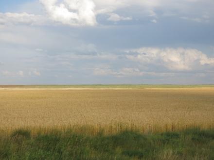 Traversée Regina Grasslands (49) (1024x768)