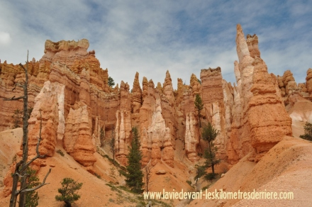 Bryce Canyon (72) (1280x850)