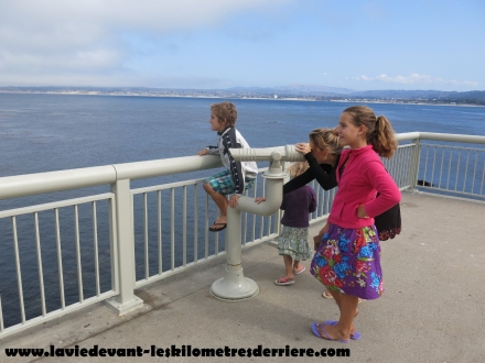 Monterey CA (107) (1280x960)