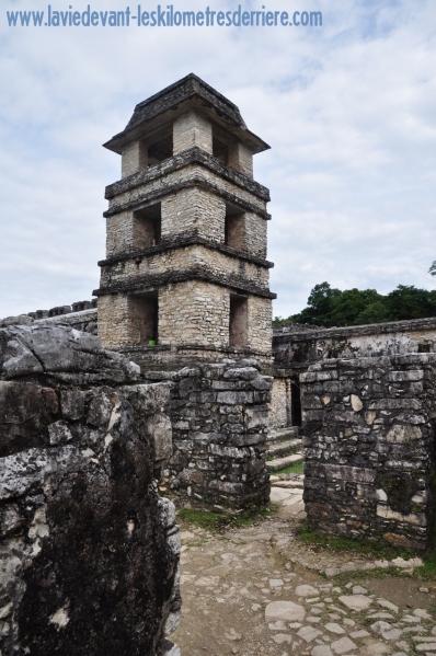 1 Palenque (8) (850x1280)