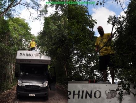 3 route Calakmul (1280x966)