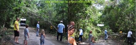3 route Calakmul 3 (1280x425)