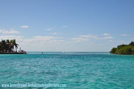 7 snorkeling (5) (1280x850)