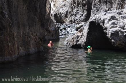 2 canyon (3)