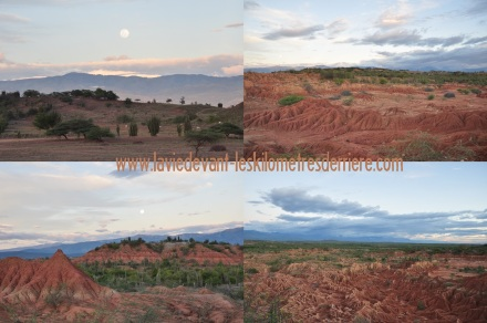 1 paysages (2)