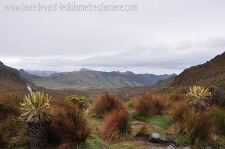 6 paysage PN (3)