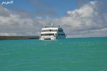 2 bateau (4)