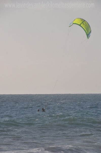 8 kite (2)