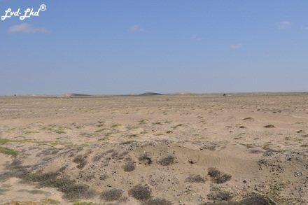 2 dunes
