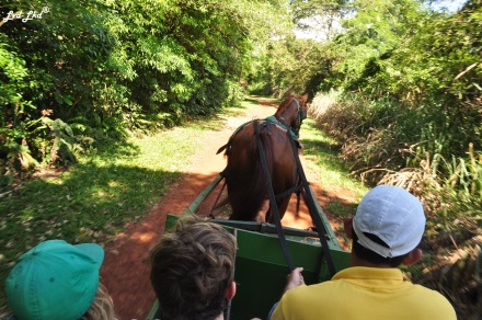 3 tour a cheval (1)