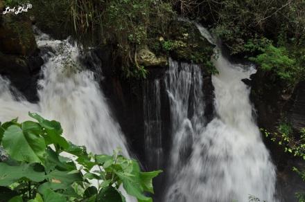 5 Iguazu Inférieur (1)