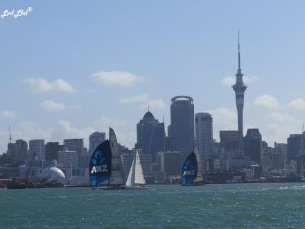 5 Auckland (1)
