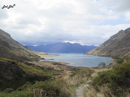 11 route haast (4)