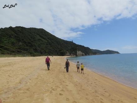 2 Anapai Beach (2)