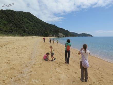 2 Anapai Beach (3)