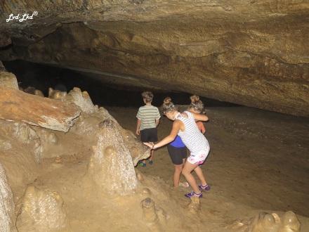 7 glow worm waipu cave (1)