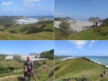 9 Wharariki beach (1)
