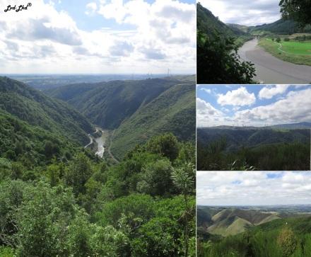 1 Manawatu gorge (5)