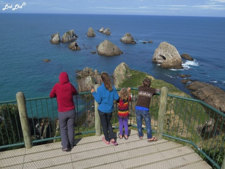 10 Nugget point (3)