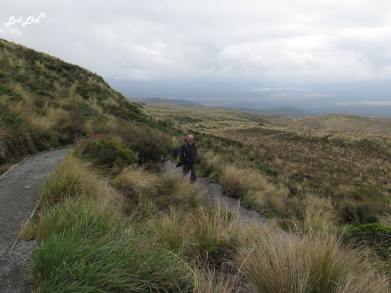11 Tongariro Alpine crossing 4 (6)