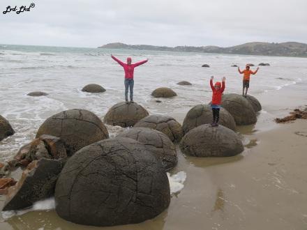 14 moreraki boulder (3)