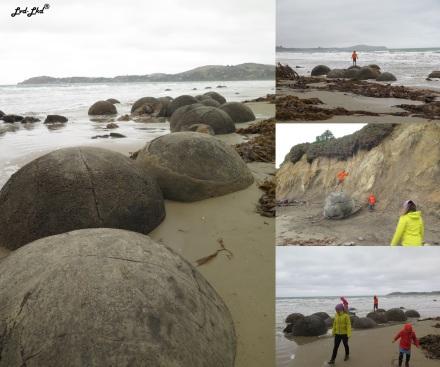 14 moreraki boulder (4)