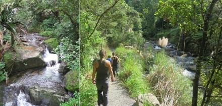 3 wentworth falls (2)