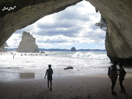 4 cathedral cove (5)