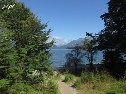 5 Manapouri lake c (1)