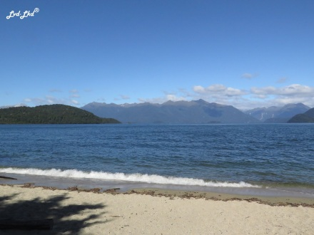 5 Manapouri lake c (2)