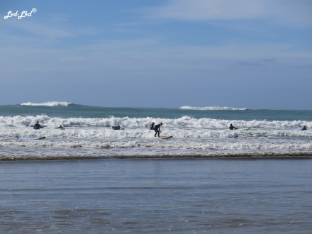 5 surf Jimmy (1)