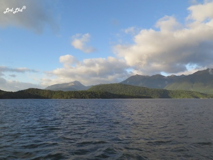 7 Manapouri lake (2)