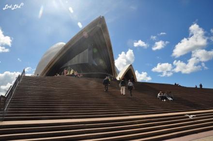 3 opera house (2)