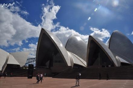 3 opera house (3)