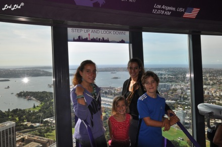 6 sydney tower (1)