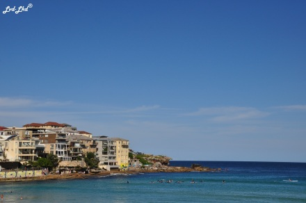 7 bondi beach (1)