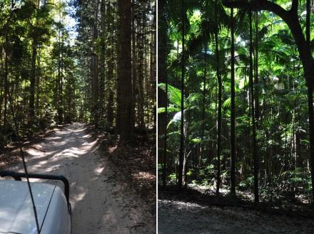 3 Birabeen lake et route (2)