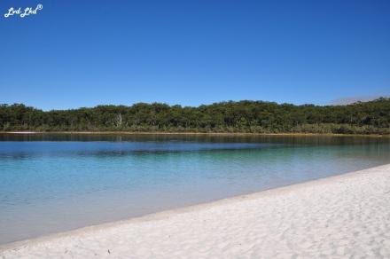 4 McKenzie Lake et Rute (5)