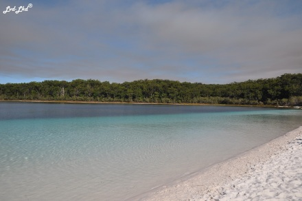 4 McKenzie Lake et Rute (9)