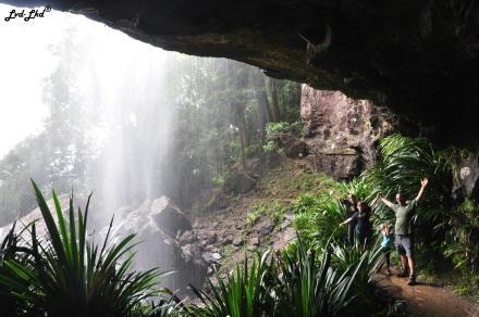 5 springbrook falls (7)