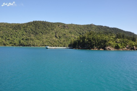 5 whitsunday (6)