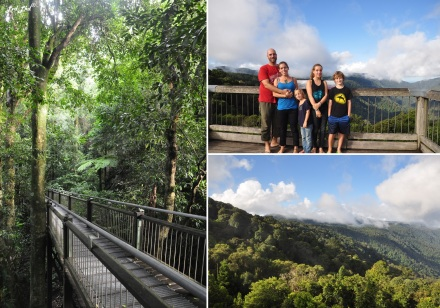 6 Dorrigo Rainforest (5)