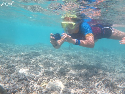 8 snorkeling (16)