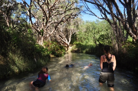 9 Eli Creek (2)