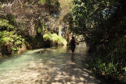 9 Eli Creek (5)