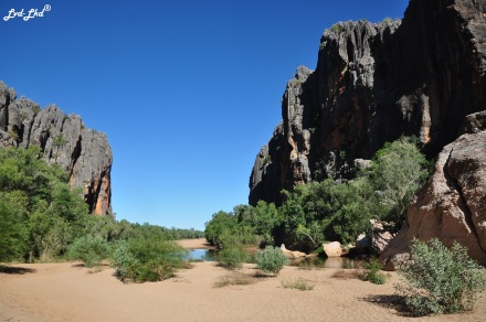 2 Windjana Gorge (4)