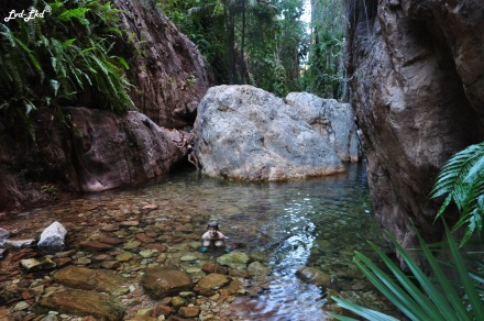 5 el questro gorge (4)